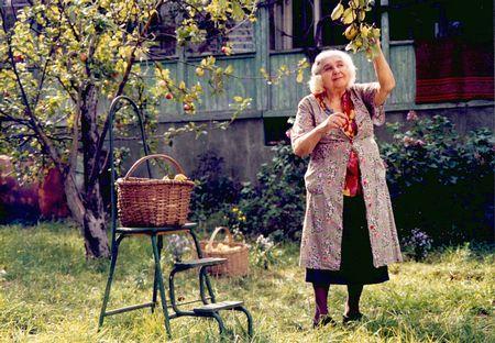 Julie Bertuccelli - Des que Otar va marxar