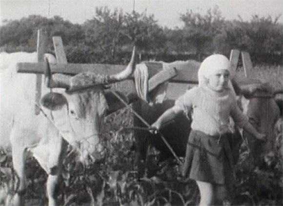 Helena Lumbreras - El campo para el hombre