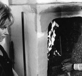 Susan Sontag - Germà Carl