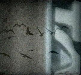 Angela Melitopoulos - Superant drama